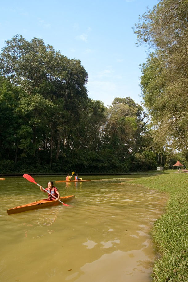 A tourist kayaks over the MacRitchie Reservoir